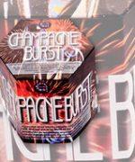 61800-Champagne-burst-TestaConcepts-2013