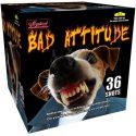 Bad_Attitude_