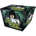 Fortune_Teller_
